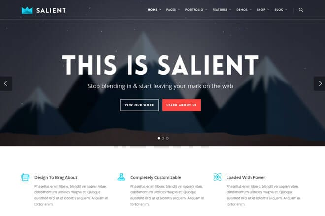 Plantilla WordPress premium Salient